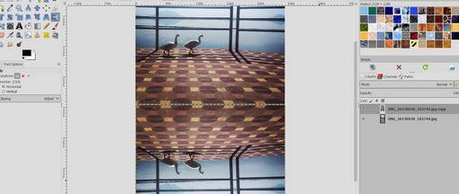 Make Mirror Effect in GIMP