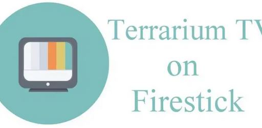 3. Installing Apps2Fire on Android Device for Terrarium TV