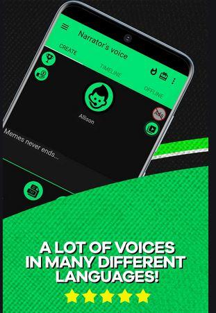 9. Narrator's Voice